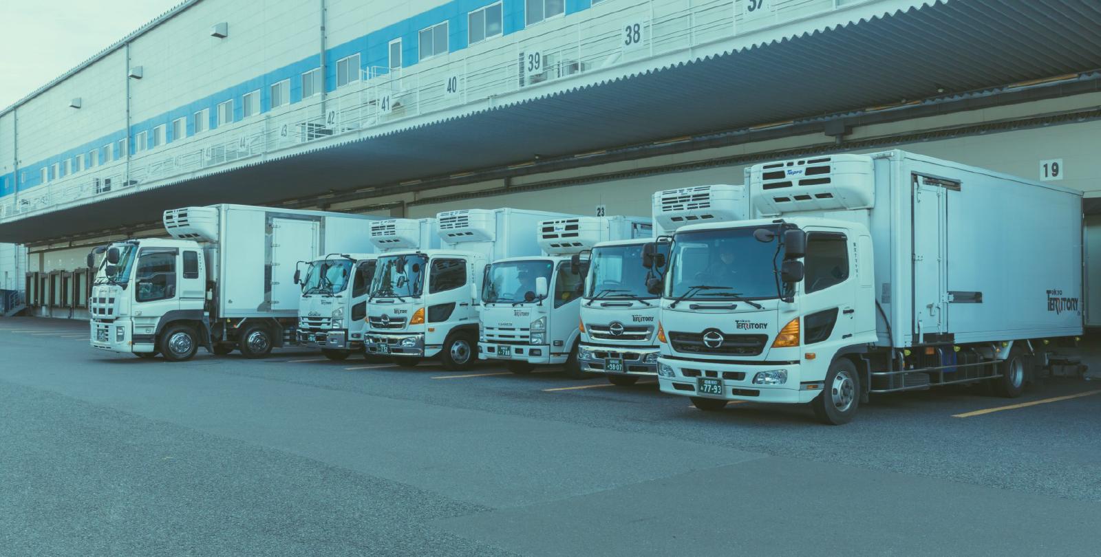 東京テリトリー 写真4